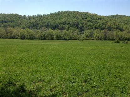 Miller Hollow Lane Lake City, TN MLS# 848089