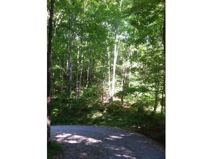 Lot 7 Bill Everett Rd Maryville, TN MLS# 860837