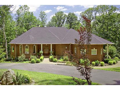 431 Thomas Loop Rd Sevierville, TN MLS# 863476