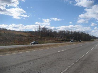 Highway 411  Madisonville, TN MLS# 876688