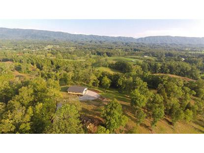 729 Paso Trail Way Seymour, TN MLS# 877084