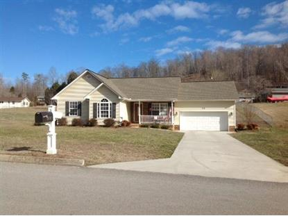 123 Luke Leinart Lane Lake City, TN MLS# 879034