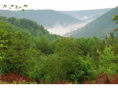 Coal Rd Clarkrange, TN MLS# 883060