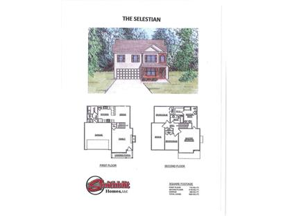 1707 Thebes Lane Rd Powell, TN MLS# 889214