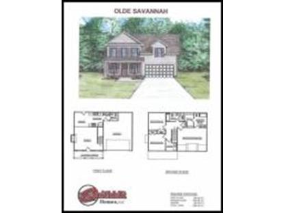 1700 Thebes Lane Rd Powell, TN MLS# 889359