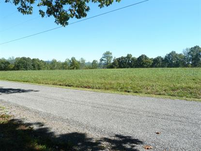 Fox Hunter  Maynardville, TN MLS# 891300