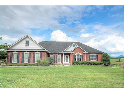460 Winners Circle Seymour, TN MLS# 892256