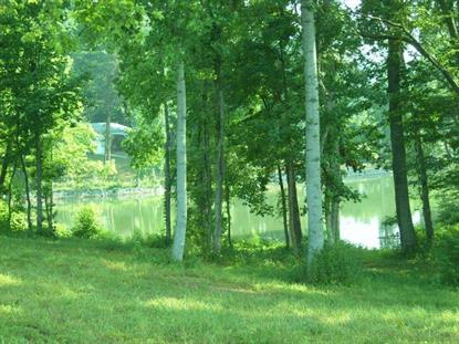Spring Cove Lane Spring City, TN MLS# 894178