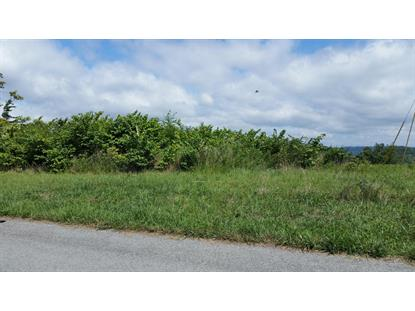 Lot 18 Panoramic Drive Maynardville, TN MLS# 894783