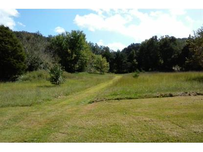 145 Hinds Creek Rd Maynardville, TN MLS# 899276