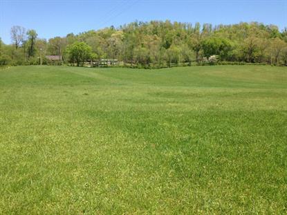 Miller Hollow Lane Lake City, TN MLS# 899573