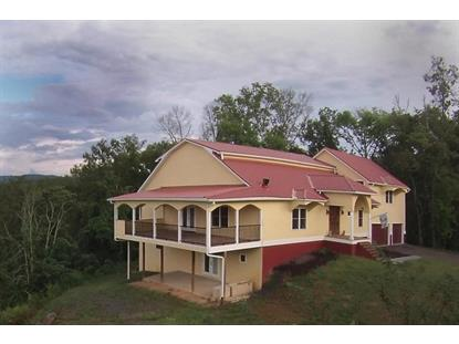 635 N Knob Creek Rd Seymour, TN MLS# 900014