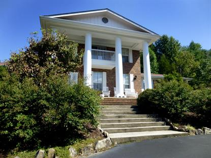 4031 Hitching Post Rd Pigeon Forge, TN MLS# 901166