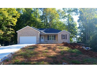 132 Luke Leinart Lane Lake City, TN MLS# 901475