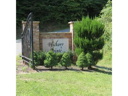 Eagle Cove Pkwy Maynardville, TN MLS# 901696