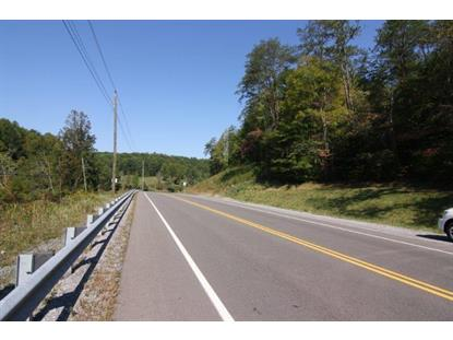 Birds Creek Rd Gatlinburg, TN MLS# 901934