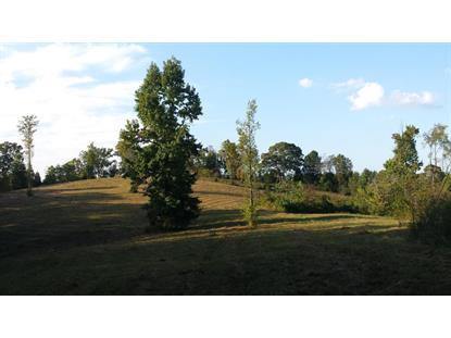 Dogwood Valley Rd, Kingston, TN 37763