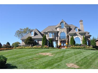 8901 Hemingway Grove Circle Knoxville, TN MLS# 903988