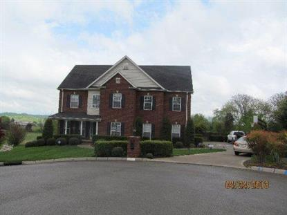 409 Willow Springs Lane Seymour, TN MLS# 904181