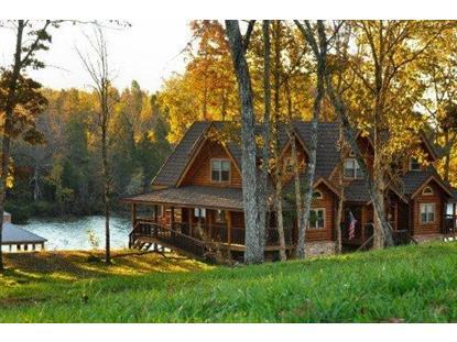 105 Driftwood Lane Spring City, TN MLS# 905235