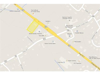11221 SE Chapman Hwy Hwy Seymour, TN MLS# 909179