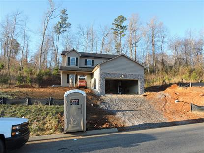 Boulder Point  Powell, TN MLS# 911727