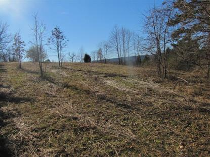 Toestring Valley Rd Spring City, TN MLS# 911758