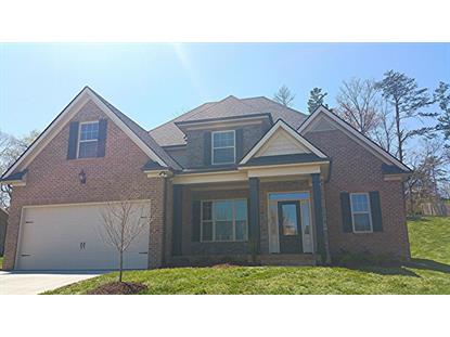 1105 Ansley Woods Way Knoxville, TN MLS# 913161