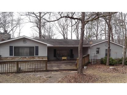 173 Dogwood Trail  Maynardville, TN MLS# 916973