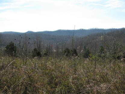 Lot 10 Hickory Springs Rd Maynardville, TN MLS# 919579