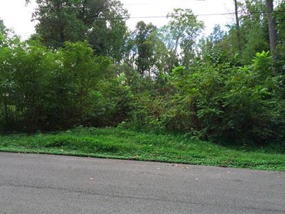 3329 Gumstand Drive Powell, TN MLS# 920123