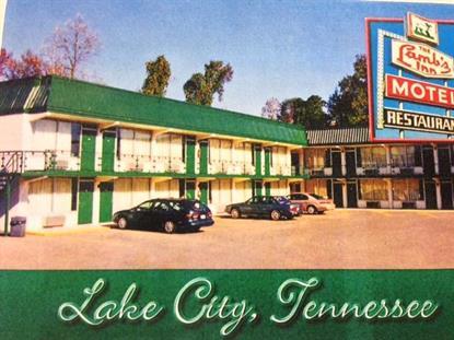 620 N Main St Lake City, TN MLS# 920539