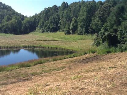 2458 Happy Creek Rd Sevierville, TN MLS# 921151