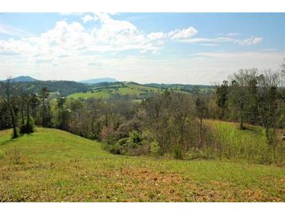 Red Bank Rd Sevierville, TN MLS# 922277