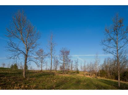 29 Hidden Forest Tr Spring City, TN MLS# 924644