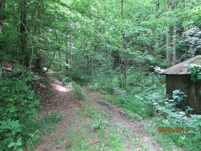 Dripping Springs Rd Seymour, TN MLS# 927245