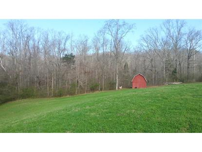 000 Caney Creek And Bowers Rd  Harriman, TN MLS# 928077