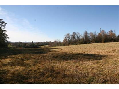 2020 Niles Ferry Rd Madisonville, TN MLS# 929371