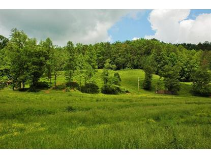 Birds Creek Rd Sevierville, TN MLS# 929486