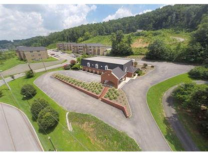 4038 NW Gap Rd Knoxville, TN MLS# 935458