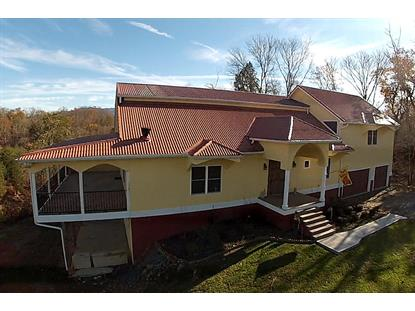 635 N Knob Creek Rd Seymour, TN MLS# 947517