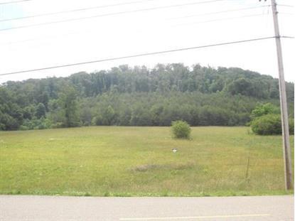 Carden Farm Rd Clinton, TN MLS# 955644