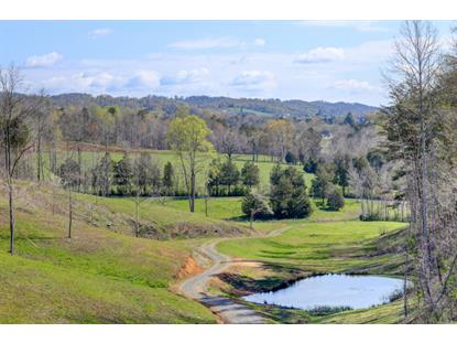 105 Raccoon Valley Rd Maynardville, TN MLS# 960543