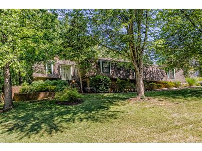 908 Chateaugay Rd Knoxville, TN MLS# 970869