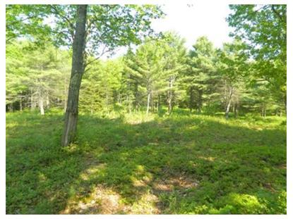0 Dunn Road  Ashburnham, MA MLS# 71692975