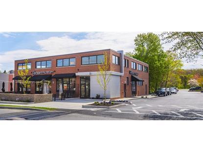 180 Needham Street  Newton, MA 02464 MLS# 71807471