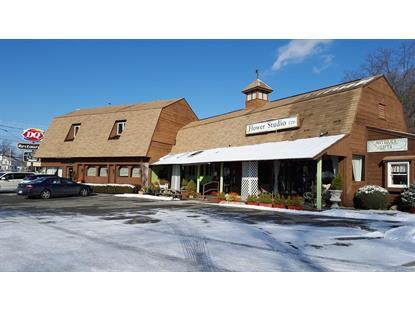 Real Estate for Sale, ListingId: 36892245, North Attleboro,MA02760