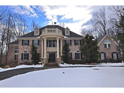 7 Canterbury Ct , Randolph, NJ