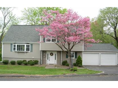 242 GARFIELD ST , Berkeley Heights, NJ