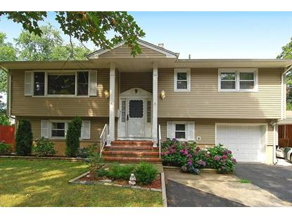 3 RICHARDS STREET , Pequannock Township, NJ